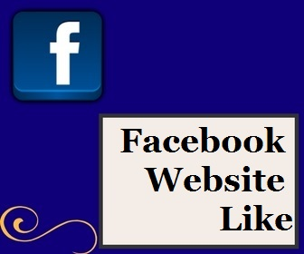 Facebook Website Like